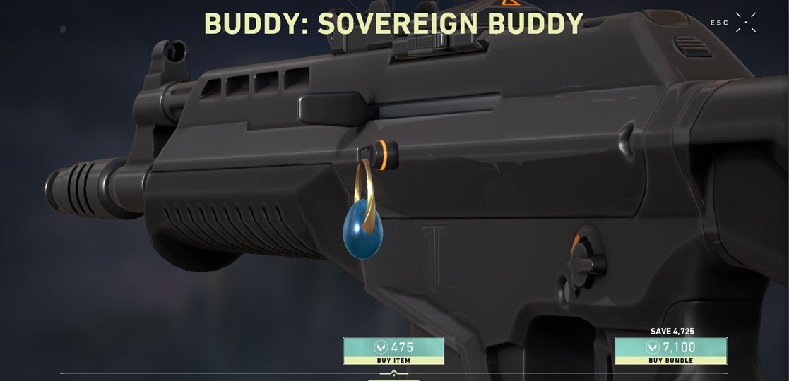 Sovereign Guardian Skin shop